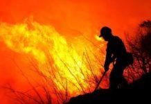 piromane-incendio